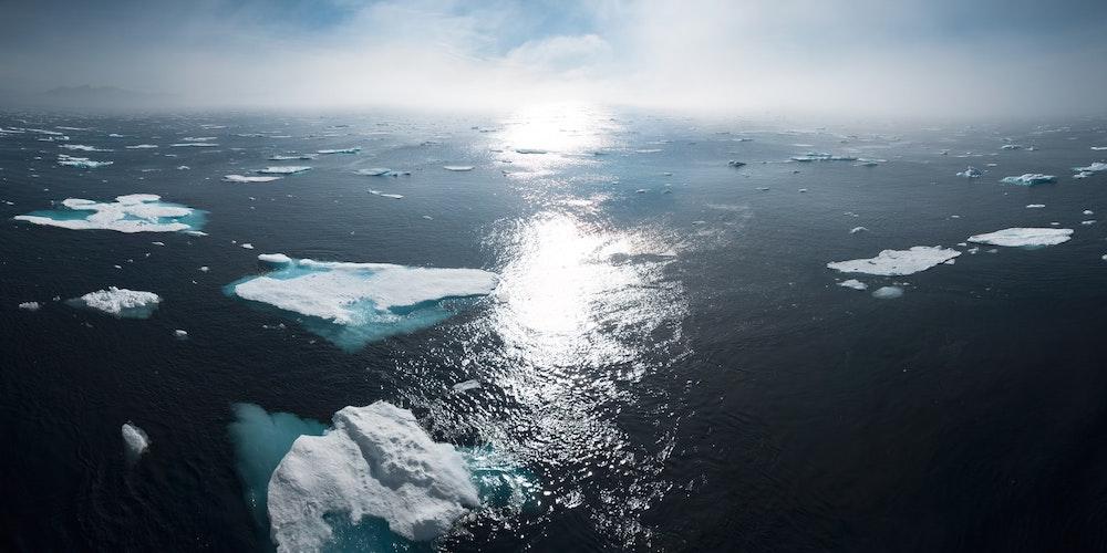 La mondialisation et la destruction imminente de l'environnement